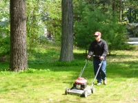 Canadian housesit required weekly mowing of the 1/4 acre lawn