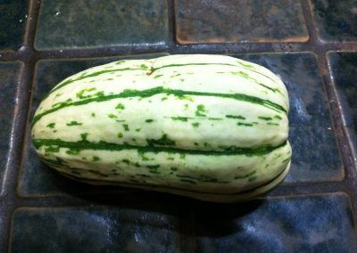 Delicata squash from our garden